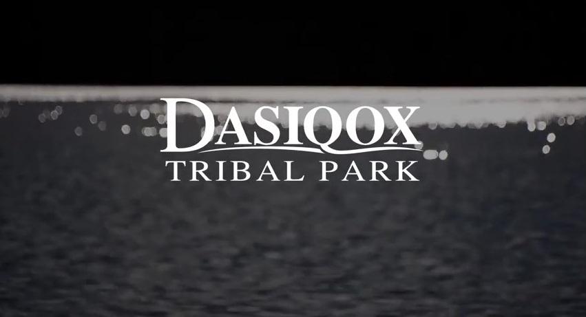 DTP Video